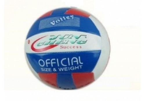 Мяч волейбольный 100609685