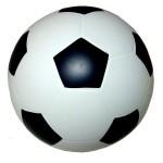 Мяч диаметр 200 мм лакированный с-56П