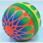 Мяч диаметр 200 мм лакированный с-34ЛП