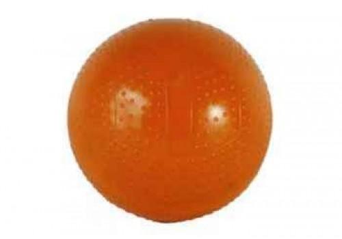 Мяч диаметр 100 мм лакированный с-39ЛП